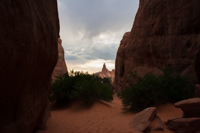 Looking out of the Sand Dune Arch canyon entrance